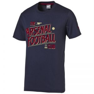 Koszulka Puma Arsenal Football Club Graphic Fan Tee Junior 74748802